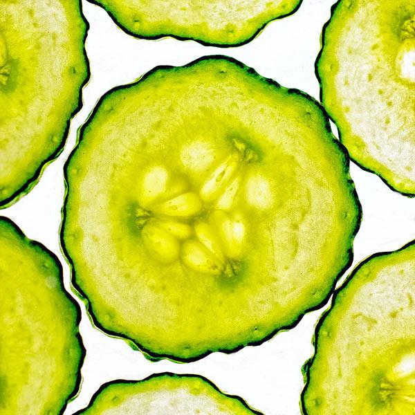 Sliced cucumber, back lit
